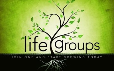 Life Group Begins –  February 2 and 3, 2015