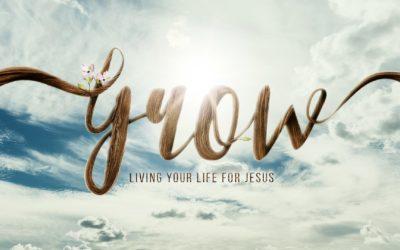 "New Teaching Series ""Grow"""